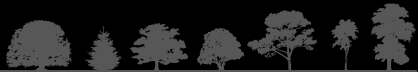 Jenks Group Tree Services